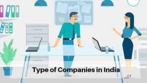 Type of Companies (1)